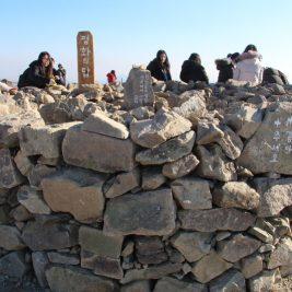 평화의탑 쌓기